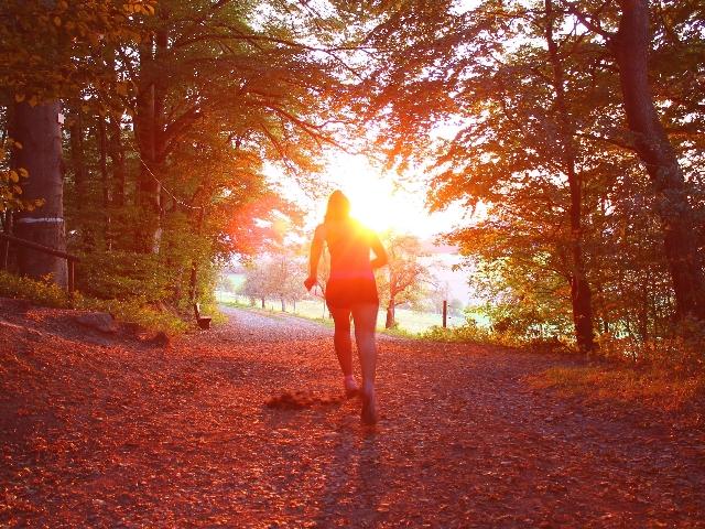 Laufen Herbst Laub Wald